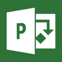 MS Microsoft Project 2013 Professional - 1PC Product Key Code Download